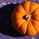 Pumpkin Purple by randomness