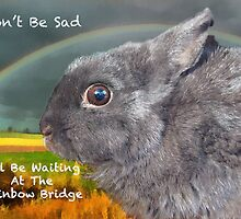 Sypathy card for loss of pet rabbit by Eve Parry
