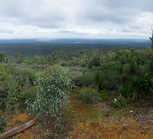 Mt Dale, View from the top, panorama by BigAndRed