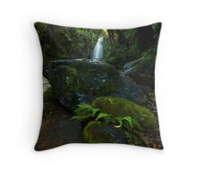 Kaiate baby ferns Throw Pillow