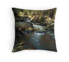 Kaiate river run drift Throw Pillow