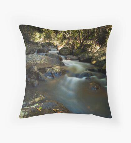 Kaiate river run drift Throw Pillow