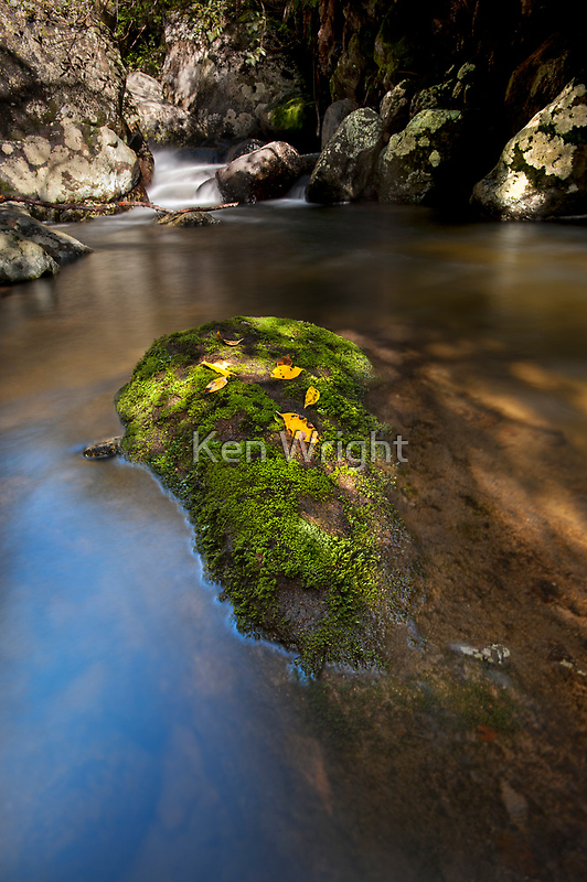 Kaiate dappled light by Ken Wright