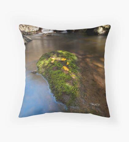 Kaiate dappled light Throw Pillow