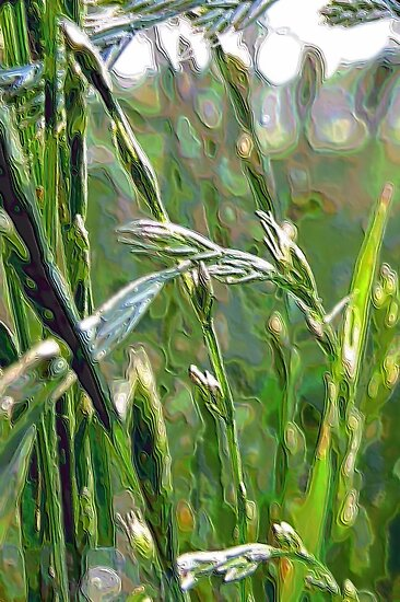 Green Grass of Home by aprilann