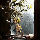 Autumn at Mardi's by Roz McQuillan