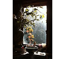 Autumn at Mardi's Photographic Print
