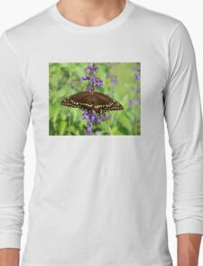 Miss Butterfly Brown Long Sleeve T-Shirt