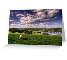 Dart valley Sheep Greeting Card