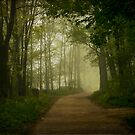 Pathway Along The Lake by JKKimball