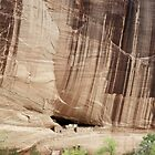 White House Ruins, Canyon de Chelley, Arizona by Pete Paul