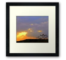 Salute the day! Framed Print
