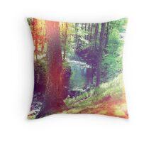 Enchantments Throw Pillow