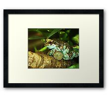 Just Chillin... Framed Print