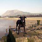 Shela on the beach. by Michael Haslam