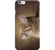 Feline Meditation iPhone Case/Skin