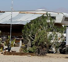 Slab City Living by Loree McComb