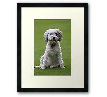 Macy Portrait Framed Print