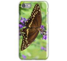 Miss Butterfly Brown iPhone Case/Skin