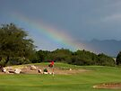 "Forget About the ""Pot of Gold"" ~ Give me the ""Hole in One"" by Lucinda Walter"