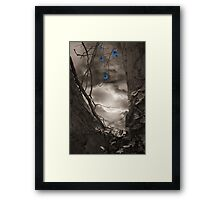 Midnight Magic Framed Print