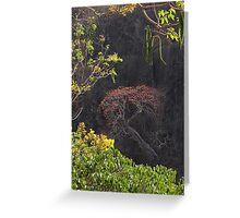 Blooming Tree On The Rock Wall - Arbol Floreando En El Acantilado Greeting Card