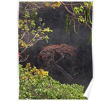 Blooming Tree On The Rock Wall - Arbol Floreando En El Acantilado Poster