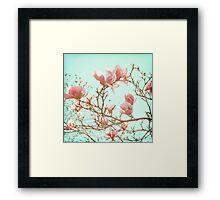 Japanese Magnolias Framed Print