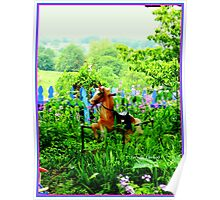 The Rocking Horse in the Garden Poster