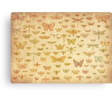 100 Flying Bugs (colour) Canvas Print