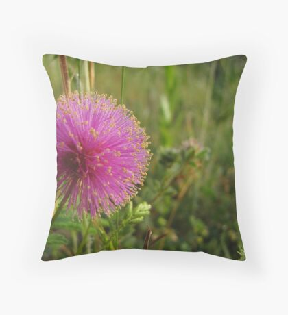 Texas Wildflower - Sensitive Briar Throw Pillow
