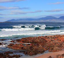 Raw Tasmania by Steve Read