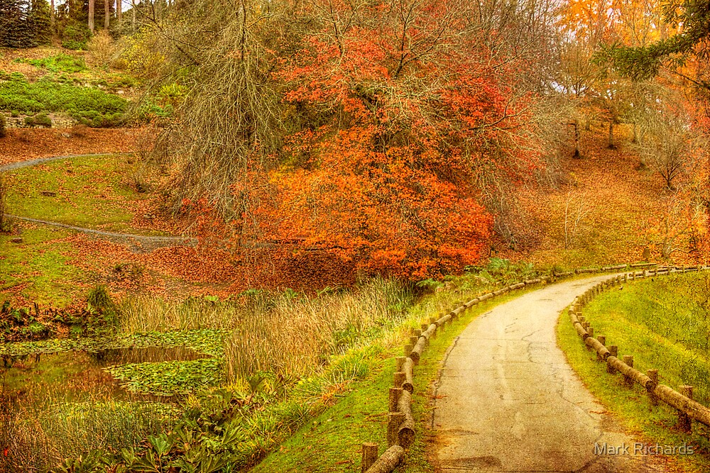 Autumn Paths Mt Lofty Botanic Gardens Adelaide Hills