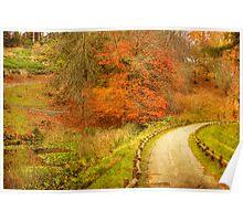 Autumn Paths - Mt Lofty Botanic Gardens, Adelaide Hills, SA Poster