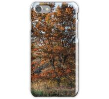 Everything Has a Season iPhone Case/Skin