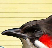 Bird Notes: Grateful Sticker