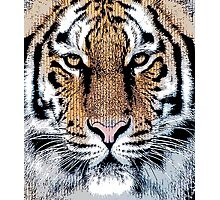 Tiger Portrait in Graphic Press Style Photographic Print