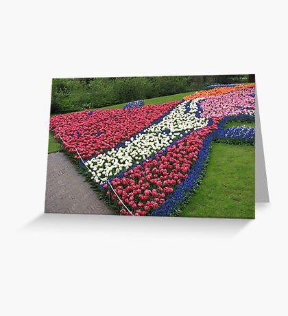 Flamboyant Flowerbed - Keukenhof Gardens Greeting Card