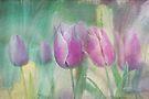simply tulips by Teresa Pople