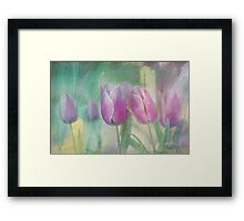 simply tulips Framed Print
