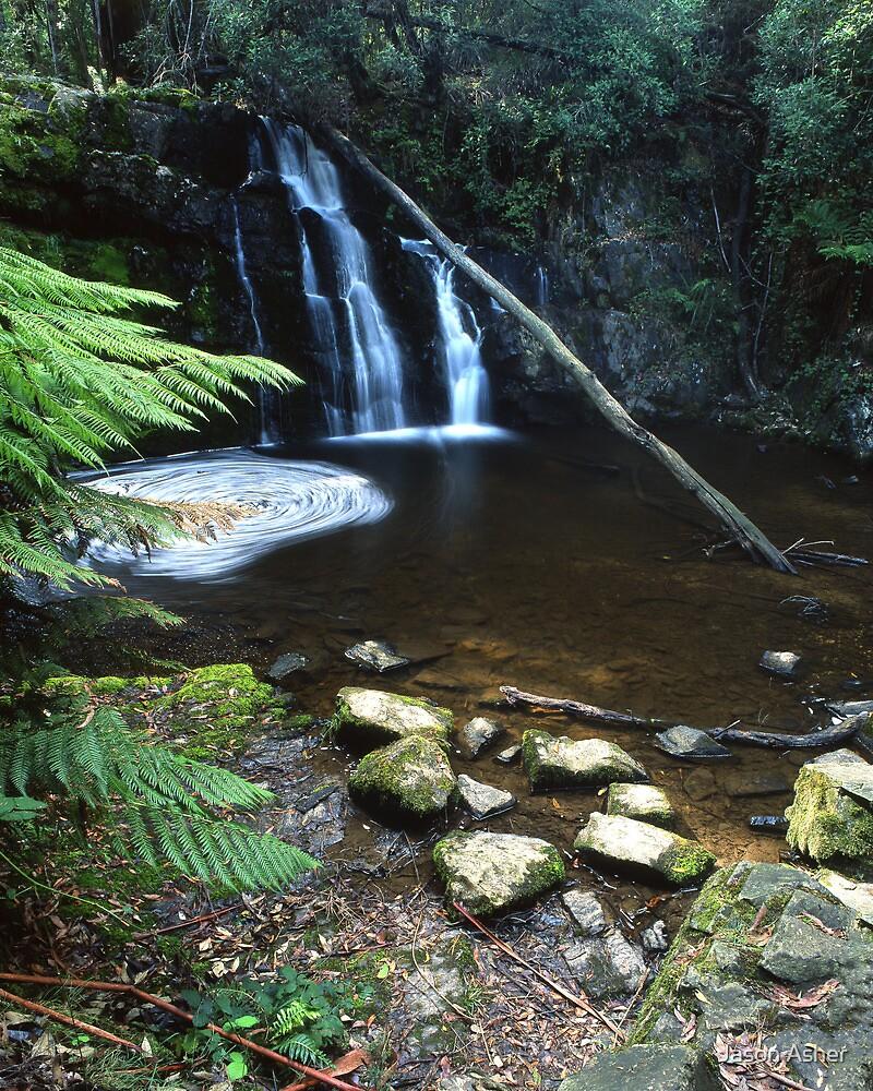 """Upper Lilydale Falls"" ∞ Lilydale, Tasmania - Australia by Jason Asher"