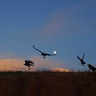 crows over moon by geophotographic