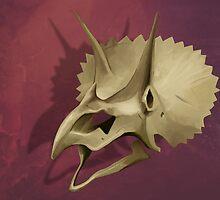 Triceratops Skull by Ashley Dadoun