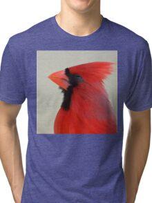 Bird Notes: Be Bold Tri-blend T-Shirt