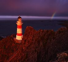 Stormy morning light over Cape Palliser - New Zealand by Mark Shean
