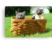 Mischievous Kittens in a Basket Canvas Print