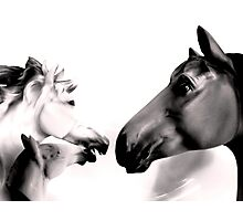 Dark Horses Photographic Print