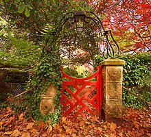 Bebeah - The Red Gate, Mount Wilson, NSW Australia - The HDR Experience by Philip Johnson