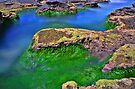 Of Green Grass and Blue Waters by bazcelt