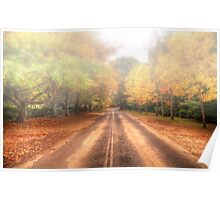 Autumn Road - Mount Wilson NSW Australia - The HDR Experience Poster